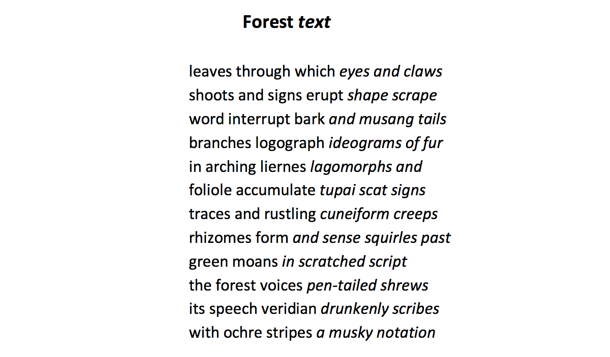 L Kiew – Forest Text